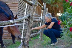 Ars Equestre - Agriturismo Ars Naturae